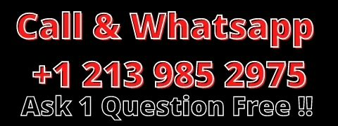 Ask 1 question free to USA Astrologer