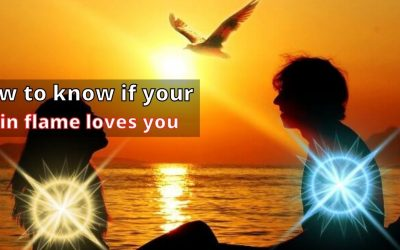 How to Know if your twin flame loves you – Astrology Support